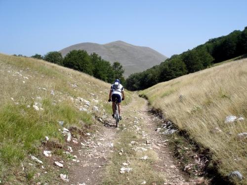 Foto: barbonis / Mountainbike Tour / Monte delle Rose / 20.06.2009 13:09:49