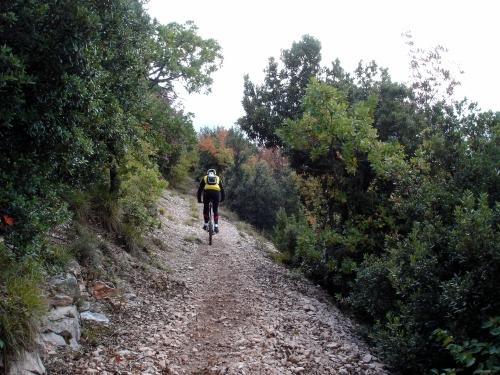Foto: barbonis / Mountainbike Tour / Fiastra / 20.06.2009 22:56:58