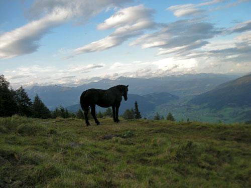 Foto: Samson / Wander Tour / Aineck 2.210 m / Blick von der Branntweineralm ins abendliche Murtal / 06.07.2009 09:28:44