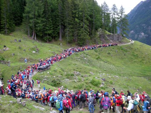 Foto: Samson / Wander Tour / Grossglockner Wallfahrt / Wallfahrt über den Glockner. / 29.06.2009 17:31:02
