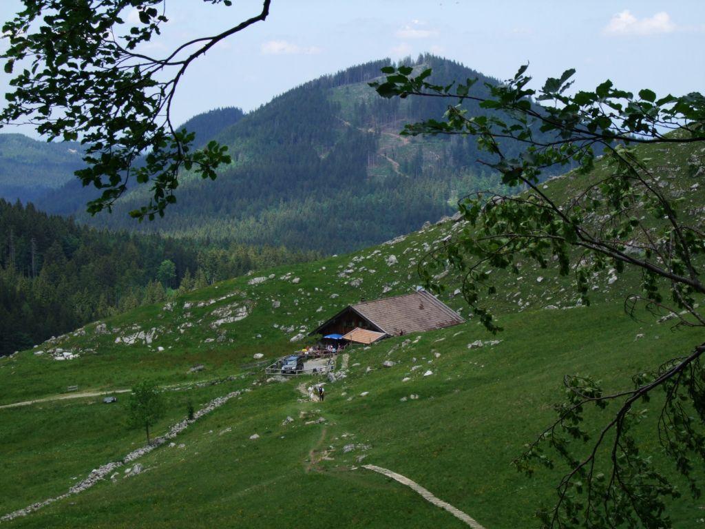Foto: hjphilipp / Mountainbike Tour / Schliersee - Bodenschneidhaus - Freudenreichalm / Freudenreichalm, gegen Westerberg gesehen / 28.06.2009 23:57:01