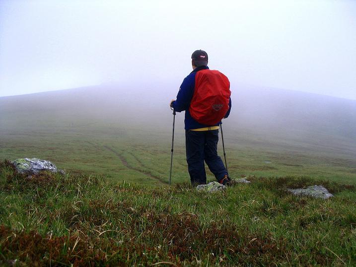 Foto: Andreas Koller / Wander Tour / Lavanttaler Impressionen auf der Koralpe (2140m) / Übergang zum Krakaberg / 01.07.2009 01:17:53