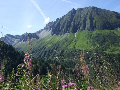 Foto: hofsab / Mountainbike Tour / Rund um den Olperer über Tuxer Joch (2338 m) - 3 Tagestour / wunderbare Landschaft / 26.08.2009 20:37:05