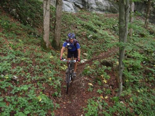 Foto: hofsab / Mountainbike Tour / Rund um und auf die Kampenwand (1664 m) / Wanderweg von Niedernfels nach Mühlau / 13.08.2009 20:49:10