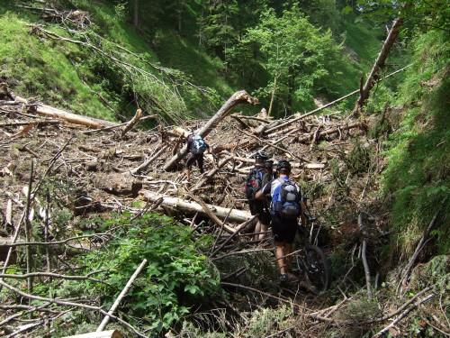 Foto: hofsab / Mountainbike Tour / Rund um und auf die Kampenwand (1664 m) / ungeplante Tragestrecke nach Murenabgang / 13.08.2009 20:54:42