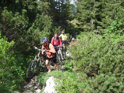 Foto: hofsab / Mountainbike Tour / Rund um und auf die Kampenwand (1664 m) / ein bischen durchs Gestrüpp / 13.08.2009 21:04:22