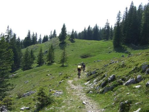 Foto: hofsab / Mountainbike Tour / Rund um und auf die Kampenwand (1664 m) / herrlich gut fahrbar / 13.08.2009 21:05:56