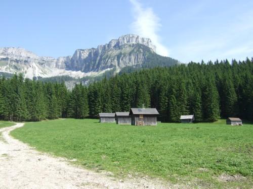 Foto: hofsab / Mountainbike Tour / Raschbergrunde (1390 m) über Blaa-Alm und Ewige Wand / 13.08.2009 20:17:59