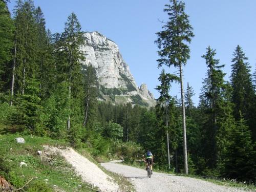 Foto: hofsab / Mountainbike Tour / Raschbergrunde (1390 m) über Blaa-Alm und Ewige Wand / unterhalb vom Sandling / 13.08.2009 20:21:20