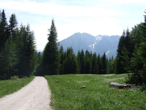 Foto: hofsab / Mountainbike Tour / Raschbergrunde (1390 m) über Blaa-Alm und Ewige Wand / 13.08.2009 20:13:43