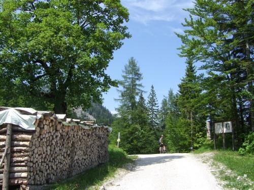 Foto: hofsab / Mountainbike Tour / Raschbergrunde (1390 m) über Blaa-Alm und Ewige Wand / vor der Abzweigung beim Salzbergwerk / 13.08.2009 20:14:33