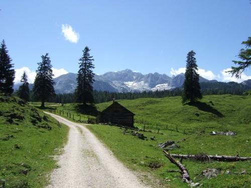 Foto: hofsab / Mountainbike Tour / Rund um den Plassen über Plankensteinalm (1530 m) und Gosauseen / uphill zur Plankensteinalm (1530 m) / 25.08.2009 12:55:41