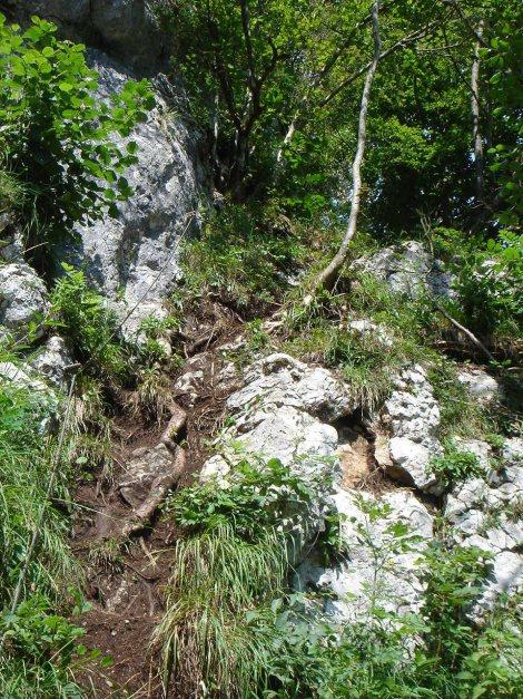 Foto: Manfred Karl / Klettersteig Tour / Brustwand Klettersteig / Versicherter Abstieg / 23.06.2012 22:53:49