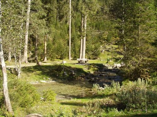 Foto: hofsab / Mountainbike Tour / Rauch- (1893 m) und Rosskopf (1929 m) von Flachauwinkl / am Zauchenbach entlang / 25.08.2009 12:44:32