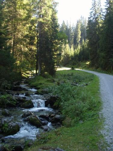 Foto: hofsab / Mountainbike Tour / Rauch- (1893 m) und Rosskopf (1929 m) von Flachauwinkl / 25.08.2009 12:44:42