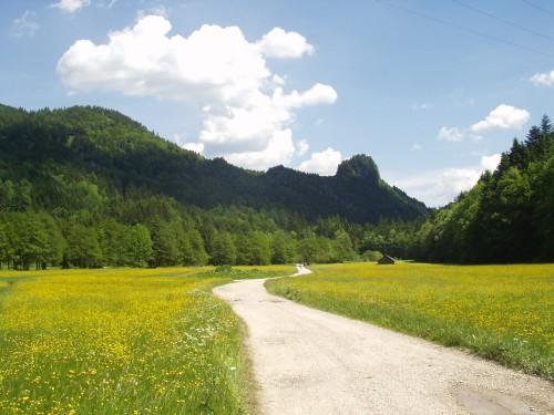 Foto: hofsab / Mountainbike Tour / Leonsbergalm (1410 m) über Schwarzensee / Fahrt zum Schwarzensee / 25.08.2009 12:38:32