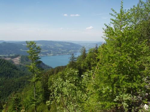 Foto: hofsab / Mountainbike Tour / Leonsbergalm (1410 m) über Schwarzensee / steile Rampe auf die Leonsbergalm / 25.08.2009 12:39:09