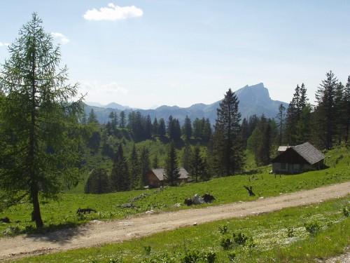 Foto: hofsab / Mountainbike Tour / Leonsbergalm (1410 m) über Schwarzensee / 25.08.2009 12:40:33