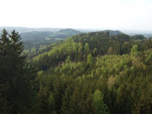 Foto: hofsab / Mountainbike Tour / Kobernaußerwaldrunde über Steiglberg (767 m) / Ausblick vom Aussichtsturm über den Kobernaußerwald / 20.08.2009 12:49:53