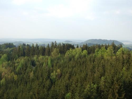 Foto: hofsab / Mountainbike Tour / Kobernaußerwaldrunde über Steiglberg (767 m) / Wald ohne Ende / 20.08.2009 12:50:39