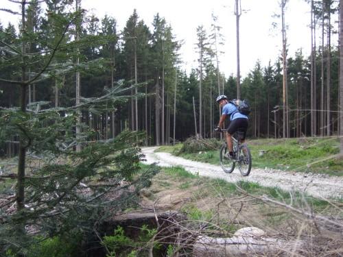Foto: hofsab / Mountainbike Tour / Kobernaußerwaldrunde über Steiglberg (767 m) / Fahrt zu den Jagdhäusern in Hocheck / 20.08.2009 12:51:36