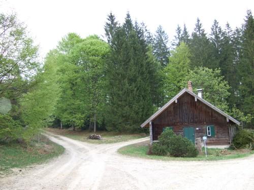 Foto: hofsab / Mountainbike Tour / Kobernaußerwaldrunde über Steiglberg (767 m) / und da rechts weiter / 20.08.2009 12:53:11