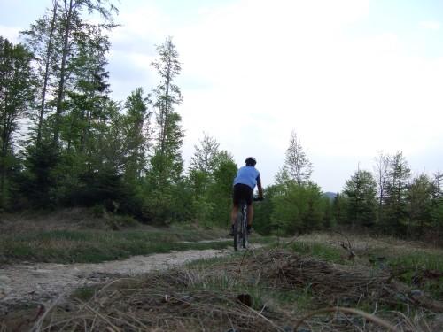 Foto: hofsab / Mountainbike Tour / Kobernaußerwaldrunde über Steiglberg (767 m) / kurzer Trail ins Redltal / 20.08.2009 12:53:38