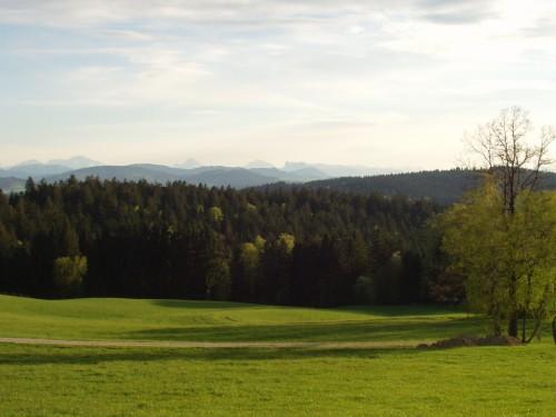 Foto: hofsab / Mountainbike Tour / Kobernaußerwaldrunde über Steiglberg (767 m) / Panorama vom Feichtenberg bei Fornach ins Alpenvorland / 20.08.2009 13:06:22