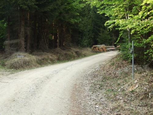 Foto: hofsab / Mountainbike Tour / Kobernaußerwaldrunde über Steiglberg (767 m) / etwas steilere Auffahrt nach Frauschereck / 20.08.2009 12:46:23