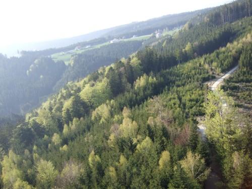 Foto: hofsab / Mountainbike Tour / Hausruckrunde über Göblberg (801 m) / der Hausruckwald / 25.08.2009 12:33:28