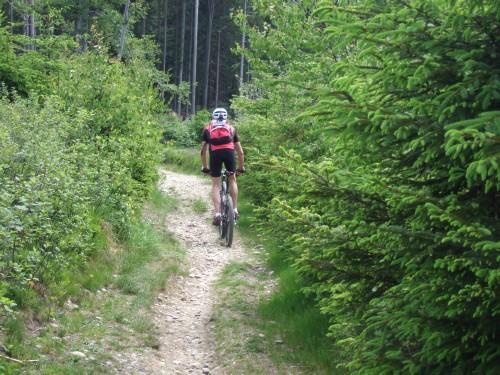 Foto: hofsab / Mountainbike Tour / Hausruckrunde über Göblberg (801 m) / 25.08.2009 12:31:27