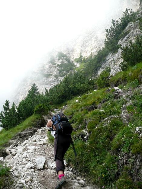 Foto: Manfred Karl / Klettersteig Tour / Via ferrata Monte Roen / Zustieg / 18.07.2009 15:19:57