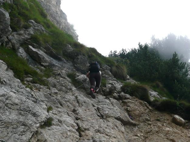 Foto: Manfred Karl / Klettersteig Tour / Via ferrata Monte Roen / Im unteren Teil des Steiges / 18.07.2009 15:19:13