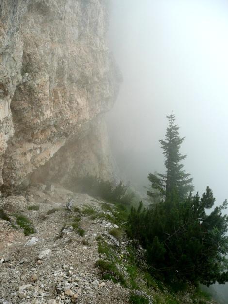 Foto: Manfred Karl / Klettersteig Tour / Via ferrata Monte Roen / 18.07.2009 15:18:32