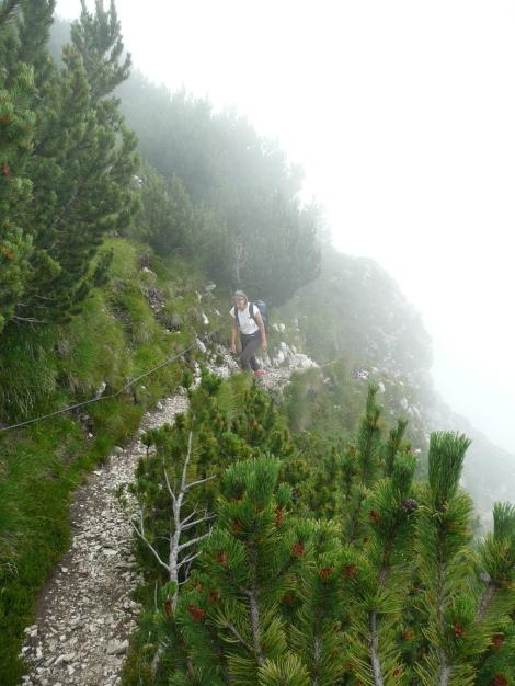 Foto: Manfred Karl / Klettersteig Tour / Via ferrata Monte Roen / Ausstieg aus dem Klettersteig / 18.07.2009 15:16:36