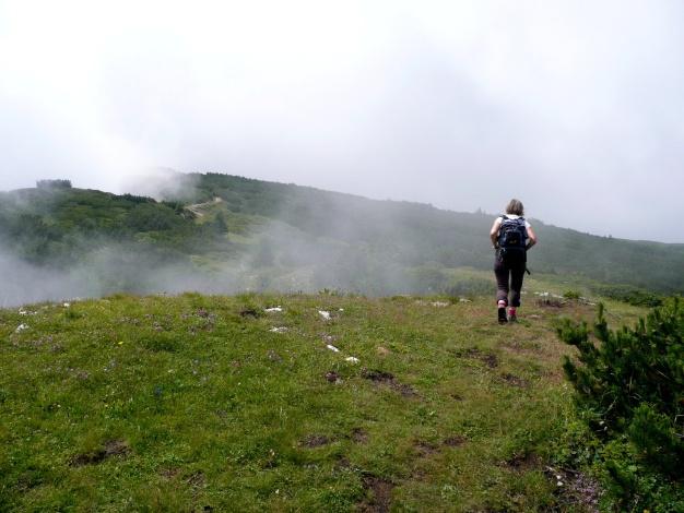 Foto: Manfred Karl / Klettersteig Tour / Via ferrata Monte Roen / Gemütliches Wandern vom Ausstieg zum Gipfel / 18.07.2009 15:16:15