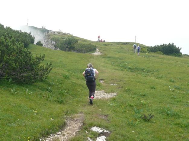 Foto: Manfred Karl / Klettersteig Tour / Via ferrata Monte Roen / Die letzten Meter zum höchsten Punkt / 18.07.2009 15:15:48