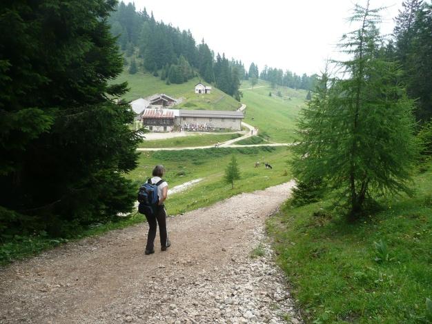Foto: Manfred Karl / Klettersteig Tour / Via ferrata Monte Roen / Malga Roen / 18.07.2009 15:14:19