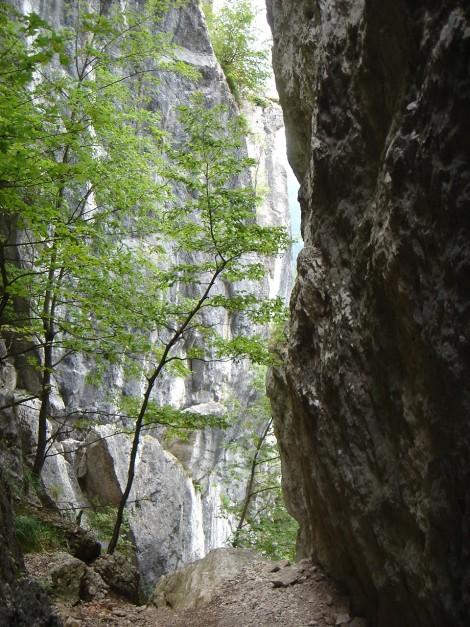 Foto: Manfred Karl / Klettersteig Tour / Klettersteige am Kanzianiberg / Augen auf - bald findet man wieder einen versicherten Steig! / 04.07.2009 13:16:50