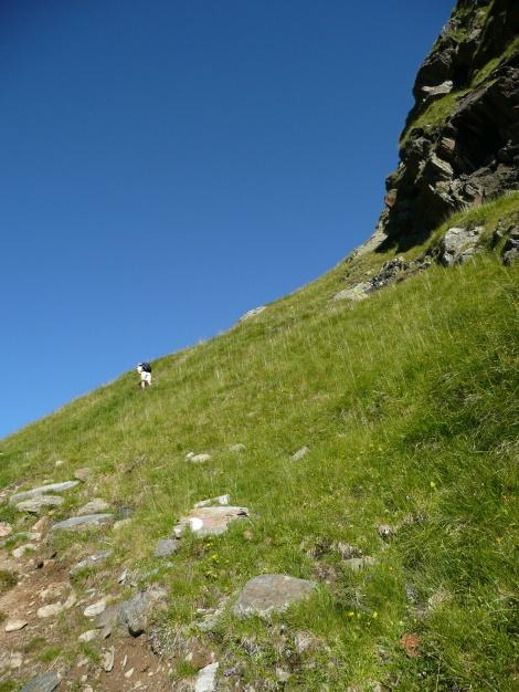 Foto: Manfred Karl / Wander Tour / Roteck – höchster Gipfel der Texelgruppe / Steile Grashänge im unteren Teil / 31.08.2009 15:40:11
