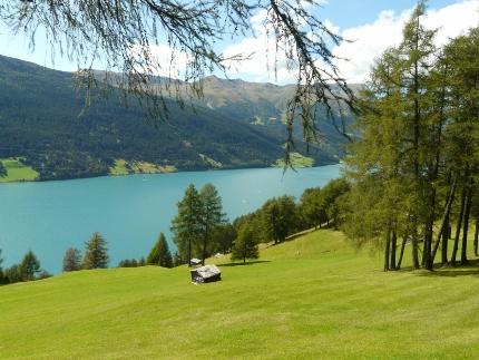 Foto: zaufen / Wander Tour / Aussichtsbalkon über dem Reschensee / Bergwiesen über dem Reschensee (Abstieg von der Vivanaalm) / 31.12.2012 13:34:11