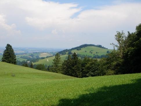 Foto: hanna84 / Wander Tour / Rundwanderweg Kaiblinger Kogel / Der Kaiblinger Kogel, ein winziger aber feiner Kogel. / 08.07.2009 06:55:30