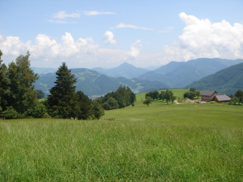 Foto: hanna84 / Wander Tour / Rundwanderweg Kaiblinger Kogel / Gipfelwiese / 08.07.2009 06:53:11
