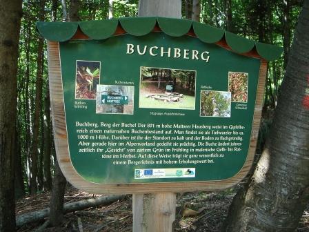 Foto: hanna84 / Wander Tour / Wandern im Naturpark Buchberg / Buchberg-Info / 09.07.2009 20:28:32