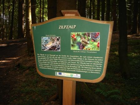 Foto: hanna84 / Wander Tour / Wandern im Naturpark Buchberg / Interessante Infos findet man bei den verschiedenen Themenwegen / 09.07.2009 20:28:02