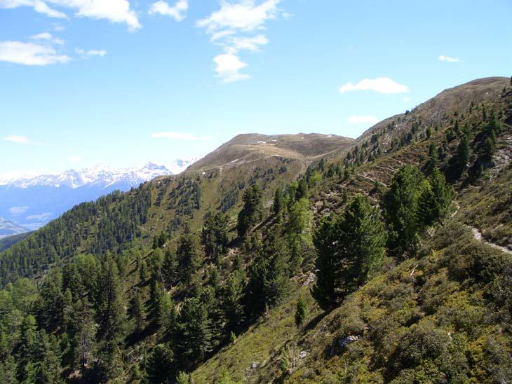 Foto: vince 51 / Wander Tour / von Schlinig auf den Monterodes / 11.07.2009 23:17:04