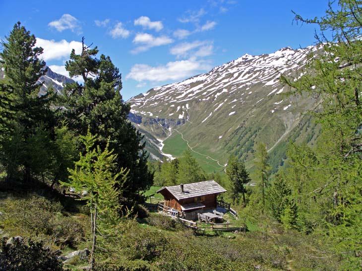 Foto: vince 51 / Wander Tour / von Schlinig auf den Monterodes / Kälberalm, im Hintergrund der Weg zur Sesvennahütte / 11.07.2009 23:14:46