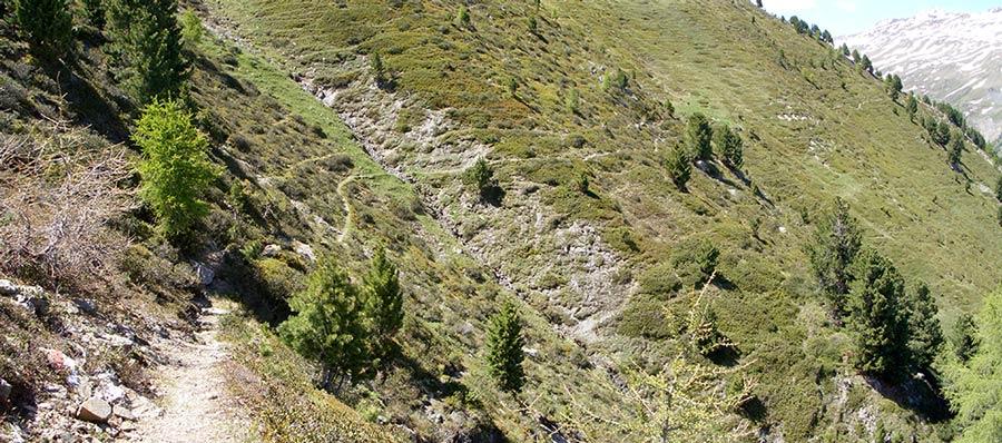 Foto: vince 51 / Wander Tour / von Schlinig auf den Monterodes / 11.07.2009 23:15:12