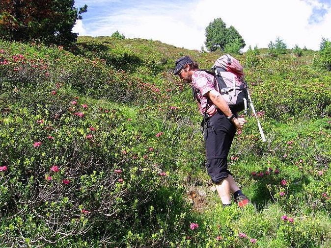 Foto: Andreas Koller / Kletter Tour / Überschreitung der Madatschtürme (2837m) / 16.07.2009 17:40:59