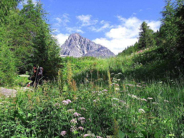 Foto: Andreas Koller / Kletter Tour / Überschreitung der Madatschtürme (2837m) / Letzter Blick auf den Schwabenkopf (3378 m) / 16.07.2009 17:13:05
